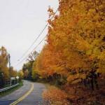 Voiture, bus ou train que choisir pour un voyage au Québec