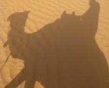 Un voyage en Tunisie… pour reprendre sa silhouette