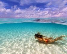 Les deux incontournables des Bahamas