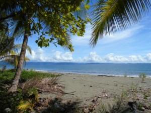 Corcovado Costa Rica - Osa penisula