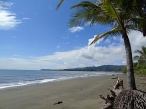 Golfo Dulce Costa Rica - Osa peninsula
