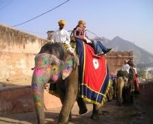 Les incontournables du pays de Ghandi