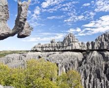 Ce qu'il faut savoir sur les parcs et réserves malgaches
