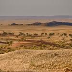 Un voyage dépaysant dans le désert de Namibie