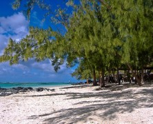 Un voyage de noces en Ile Maurice