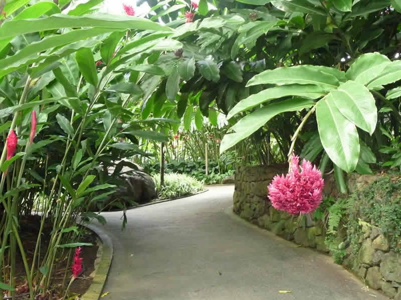 Inspiration d ailleurs bienvenue dans mon jardin geoploria explorez le monde for Agencement jardin exterieur