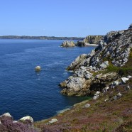 La Bretagne: tourisme vs patrimoine naturel?