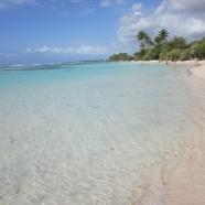 Parcs et réserves naturelles de Guadeloupe