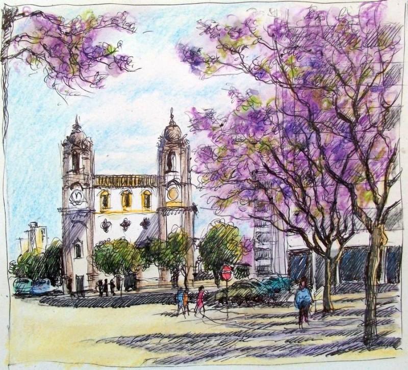 croquis-faro-portugal-les-jacarandas-en-fleurs