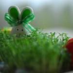 Où passer les prochaines vacances de Pâques ?