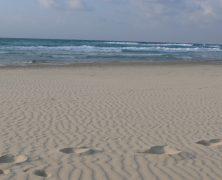 Top 5 des plages d'Israël