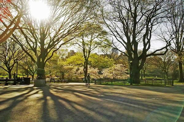printemps NY