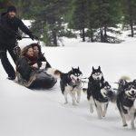 10 raisons d'explorer l'Alberta, été comme hiver