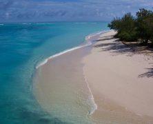 Les incontournables des chefs lieu des Provinces de la Nouvelle-Calédonie