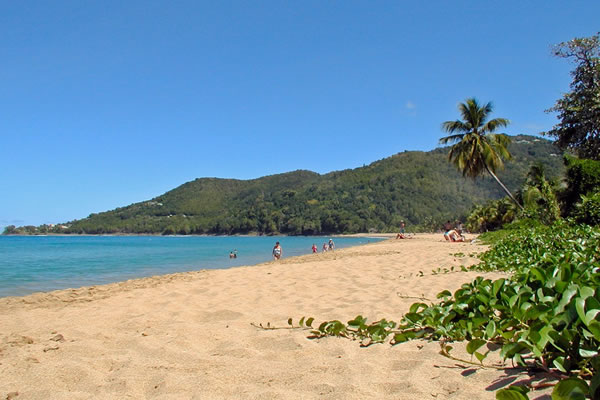 plage-guadeloupe-petite terre