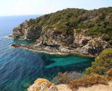 5 idées de balades en Provence
