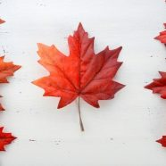 Les meilleurs conseils pour bien profiter d'un séjour au Canada
