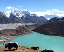 Trek au Népal : En route vers le toit du monde
