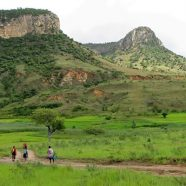 Partir à la découverte de la biodiversité malgache