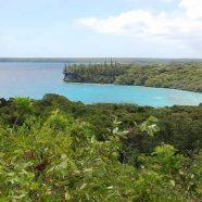 Vacances balnéaires en Nouvelle-Calédonie : 3 sites de plongées à découvrir