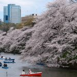 Conseils pour partir au Japon en famille