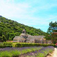 La Provence, une région riche en traditions avec une forte identité culturelle