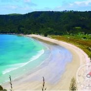 Le surf en Nouvelle-Zélande