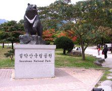 Quelques idées d'activités à prévoir au cours d'un séjour en Corée
