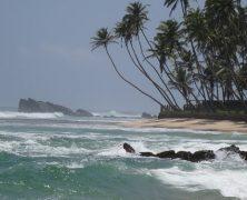 Le Sri Lanka en hiver