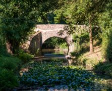Faire du camping dans le Pays de la Loire : une solution pour passer des vacances en plein air