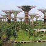 Singapour, une destination asiatique qui vous dépaysera