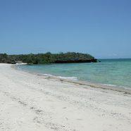 Quelques activités à faire aux Quirimbas en Mozambique