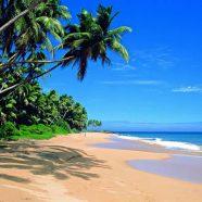 Les meilleures découvertes à faire au Sri Lanka