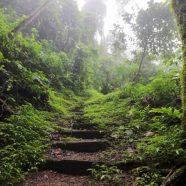 Les meilleures destinations d'écotourisme dans le monde