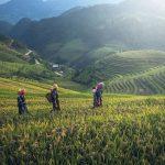 Les pays exotiques les moins chers pour voyager