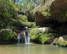 3 parcs nationaux à ne pas manquer lors d'un voyage à Madagascar