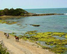 Tourisme en République dominicaine : les villes à découvrir
