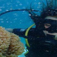 5 destinations de rêves pour la plongée sous-marine