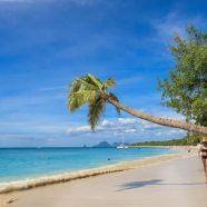 Préparez votre voyage à la Martinique pour un séjour de rêve