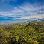 Le Chili, une destination fascinante  dans le Pacifique