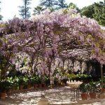 4 visites incontournables lors d'un séjour à Malaga