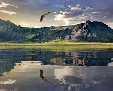 Nouvelle Zélande : Les meilleures randonnées de l'île du sud