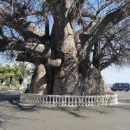 À la découverte de la ville de Majunga à Madagascar