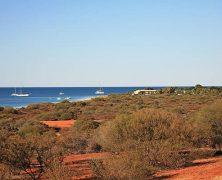Séjour en Australie :  top 3 des parcs marins à visiter