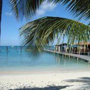 4 activités à ne pas manquer à Aruba