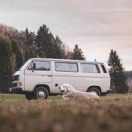 Pourquoi choisir un van aménagé pour aller en vacances ?