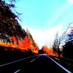 Road trip: quels sont les avantages et les inconvénients?