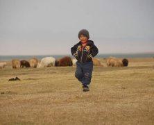 Kirghizistan : Nos idées d'activités insolites