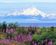 5 choses à faire en Alaska pour cette année 2021