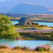 Découvrir les attraits de Napier, en Nouvelle-Zélande